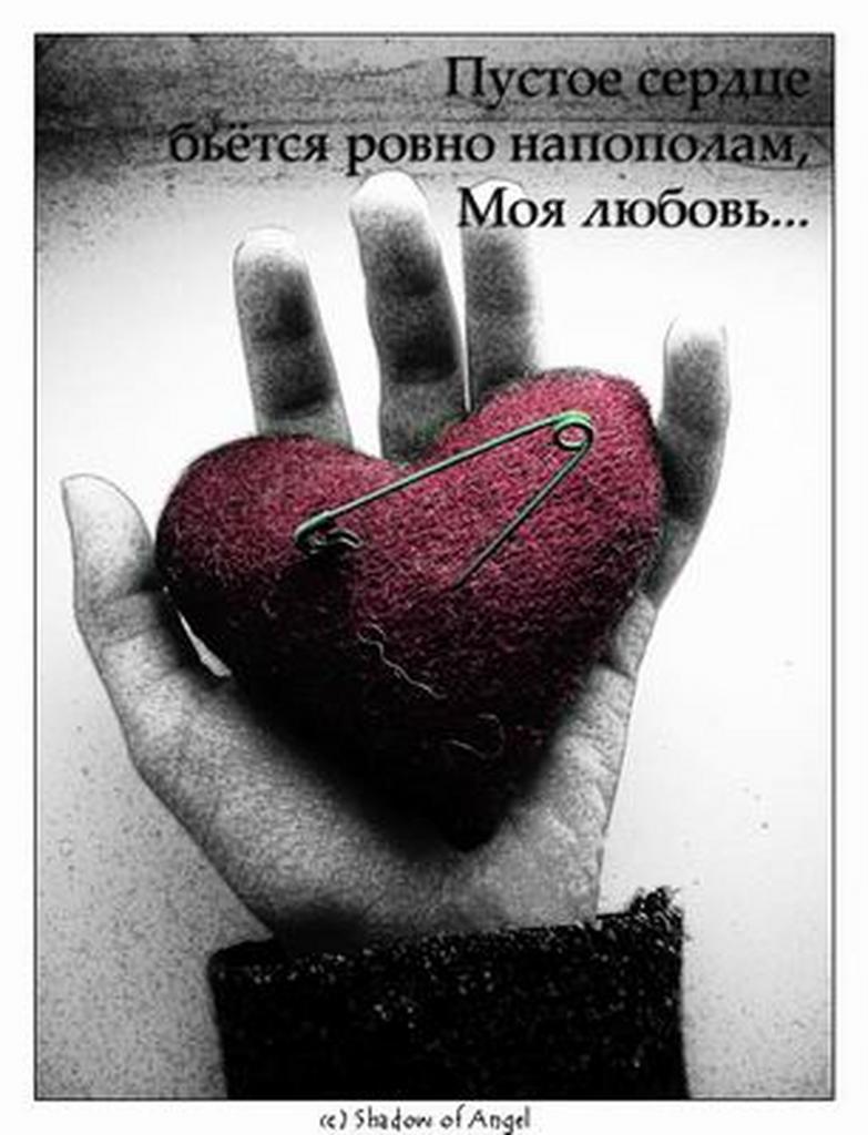 Фото на тему Прикольные смешные фразы про любовь.